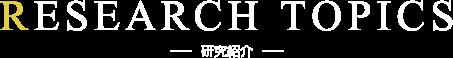 RESEARCH TOPICS 研究紹介
